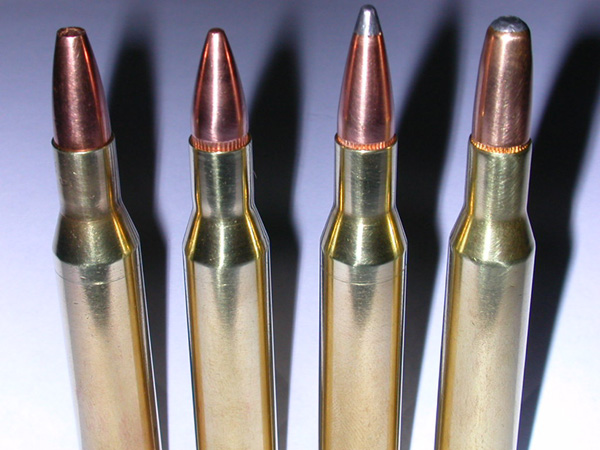 .270 Winchester Cartridge