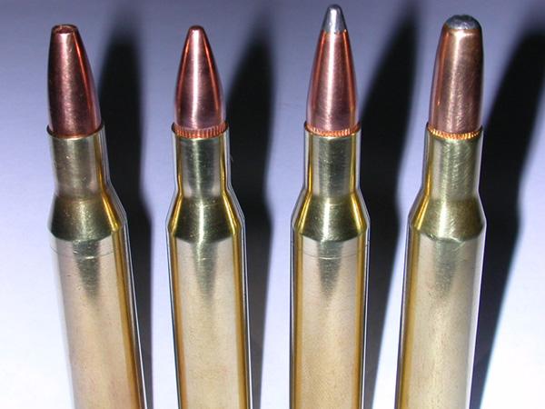 .270 Winchester Cartridge