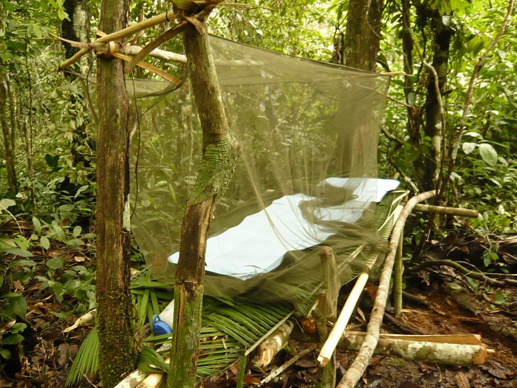 The perfect shelter if you have brought the right gear
