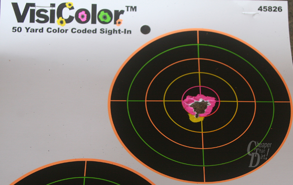 VisiColor target with 10 shot-group