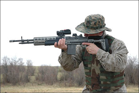 Mk.14 EBR (Enhanced Battle Rifle)