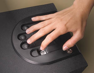 A biometric safe keeps children from accessing your gun.
