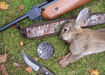 Air guns, particularly air rifles, make excellent target, hunting and competitions rifles.