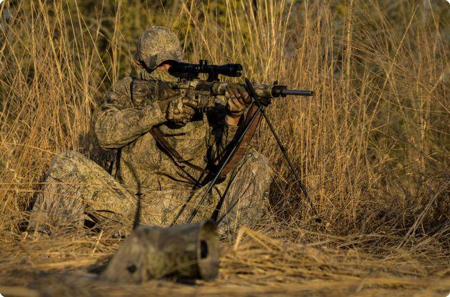 AR Varmint Hunting
