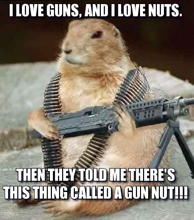 "Meme of a squirrel holding a gun. Picture reads, ""I love guns and I love Nuts. They told me there is this thing called a gun nut."""