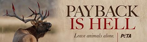 PETA anti hunting banner
