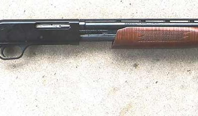 The author's .410 bore Mossberg shotgun with brown wood-grained stock on a gray mottled background.