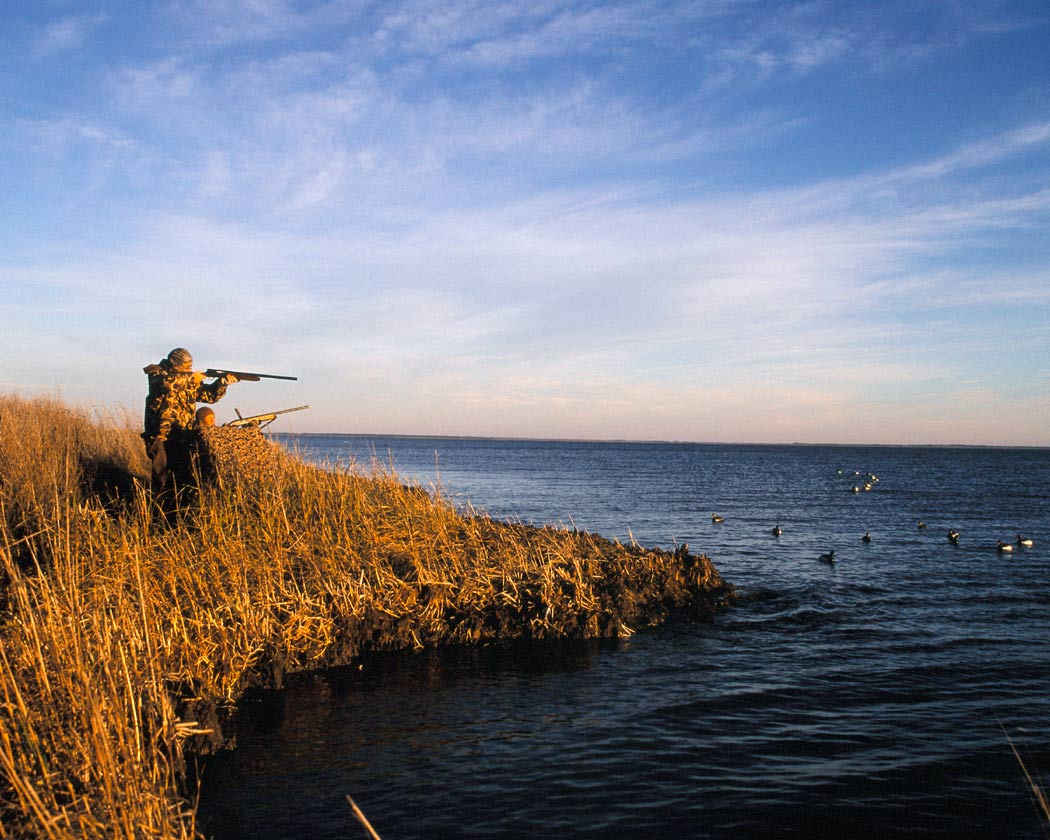 Picture shows a man duck hunting.