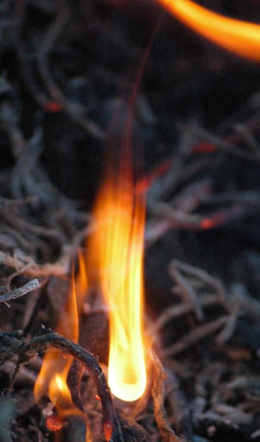 survival saturday starting a fire. Black Bedroom Furniture Sets. Home Design Ideas