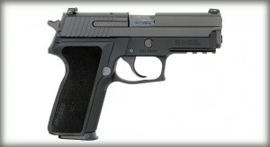 This Nitron finished P229 features