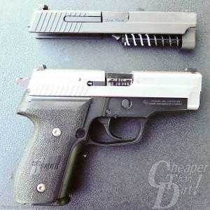 P229 with 2 Slides on a gray background.