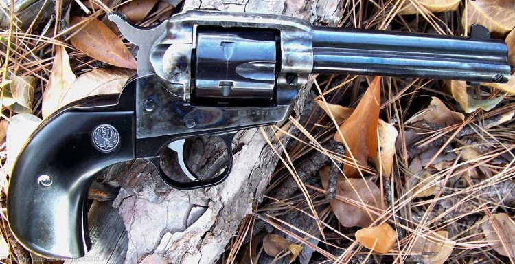 Ruger Single Six variant in .32 H and R Magnum  on a background of leaves