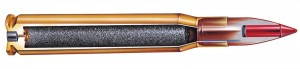 Cutaway of a .17 HMR cartridge