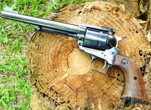 Silver barreled, brown handled Super Blackhawk on a tree trunk