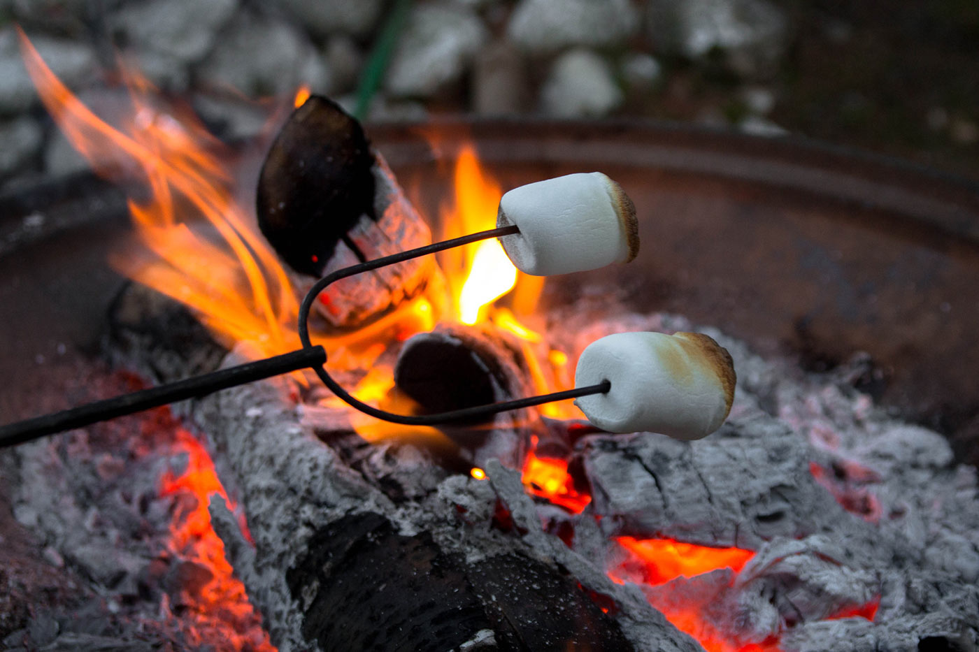 Picture Shows Someone Roasting Marshmallows Over A Campfire