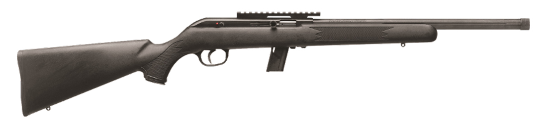 Picture shows a .22 LR rimfire rifle with black synthetic stock.