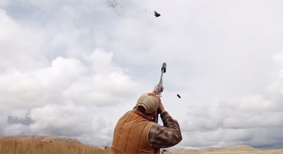 Suppressed Pheasant Hunting