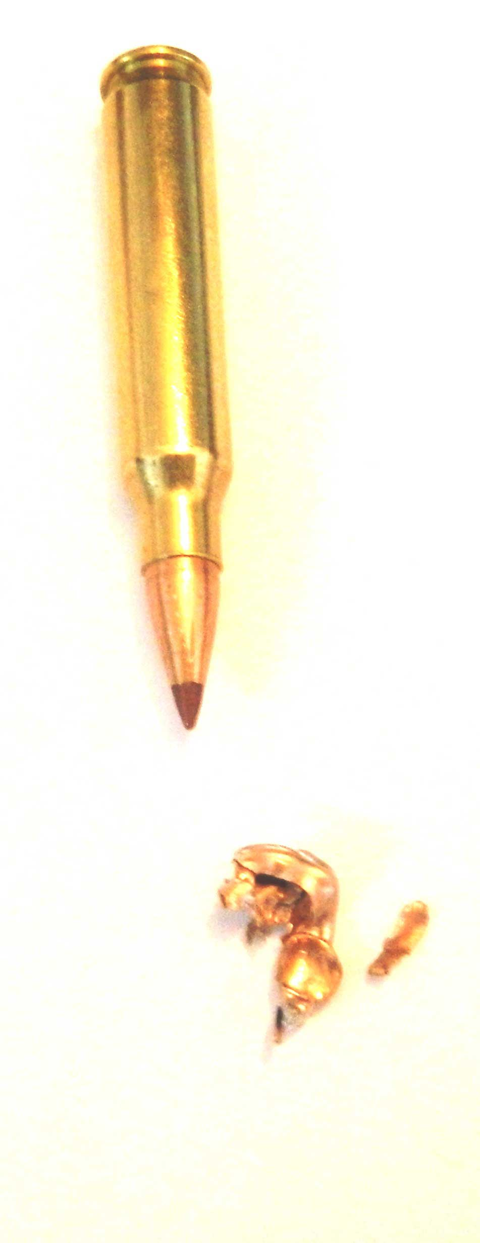 .223 Remington cartridge and spent bullet
