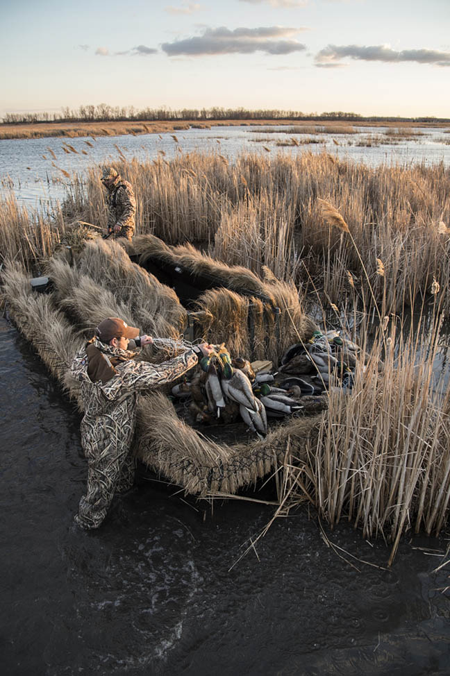 Waterfowl Vision: Beating the Odds
