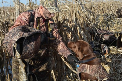 Hunter holding the collar on a retriever wearing a neoprene camo vest