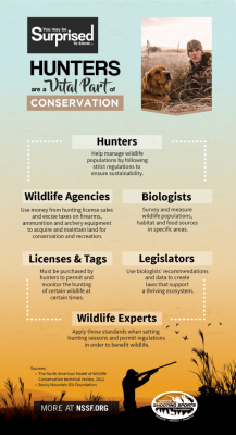 Hunters support and respect wildlife infographic