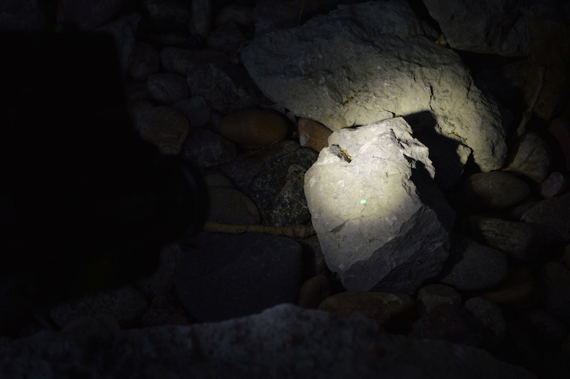 Rock illuminated by a weapon light with green laser dot