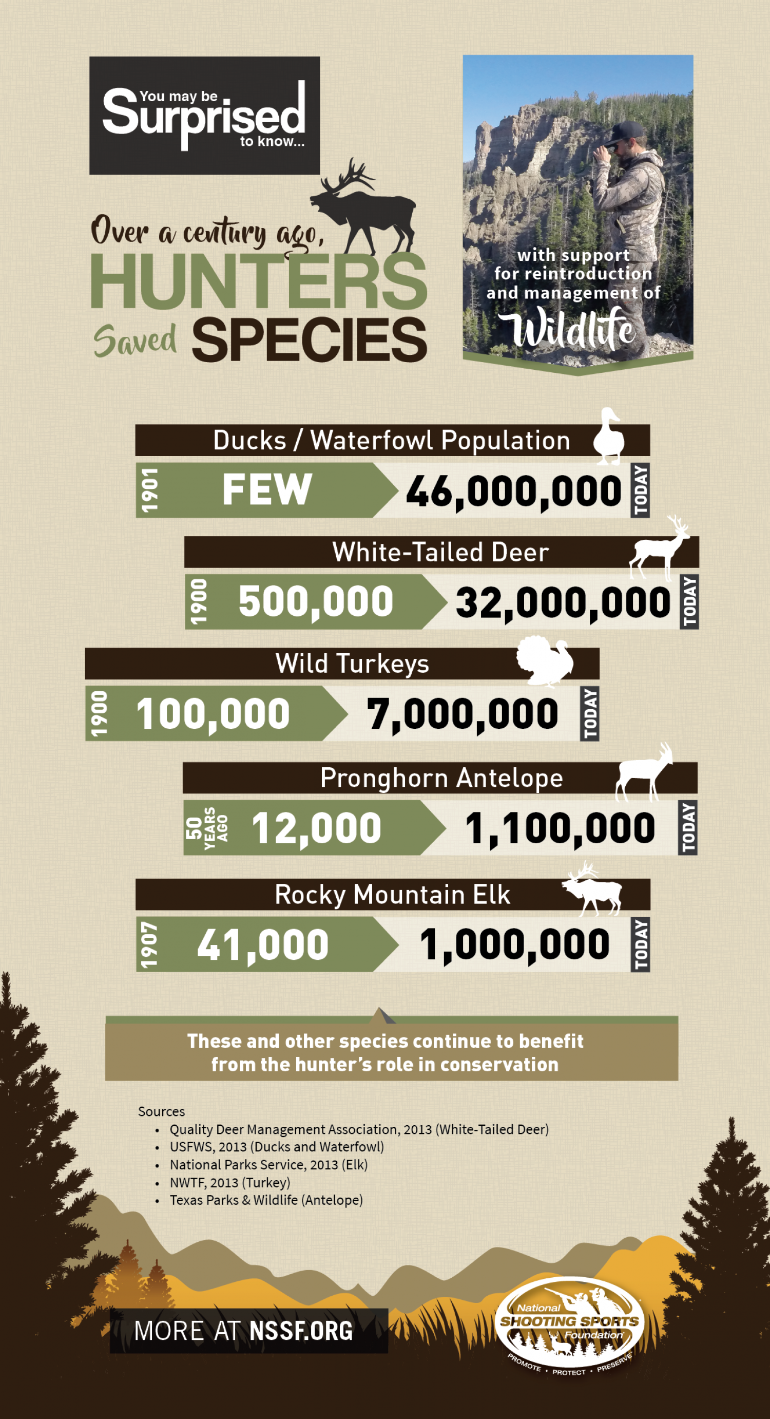 hunters saved the species infographic