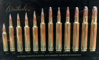 Display of Weatherby rifle cartridges