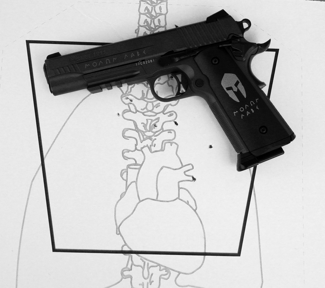 SIG Sauer Spartan Airgun on anatomy target