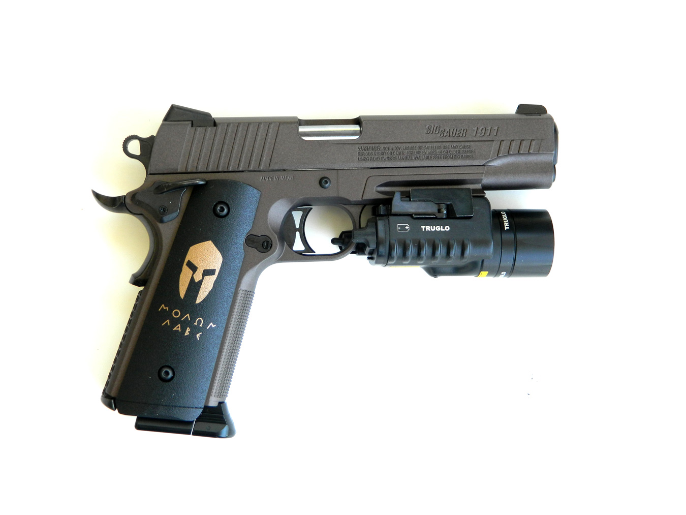 SIG Sauer Spartan Airgun with TruGlo sights